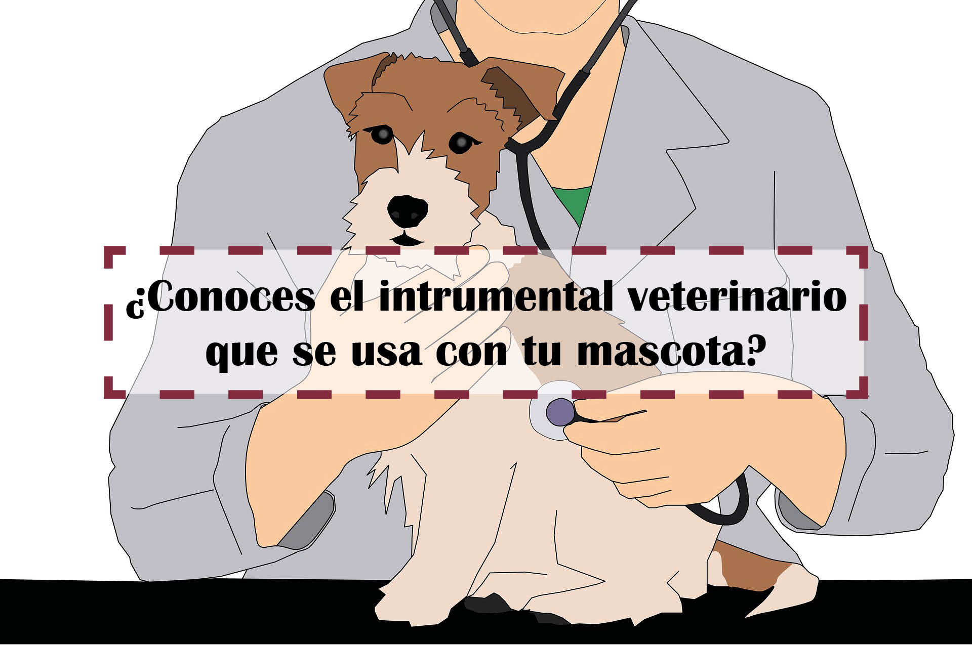 isntrumental veterinario